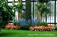 Winter At Longwood Gardens
